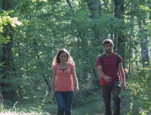 Dans les chemins à Nuret-le-Ferron