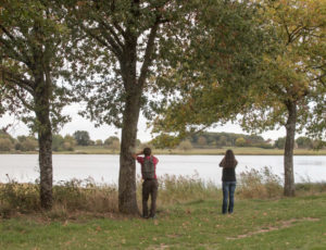 Aux portes de la Brenne – Pause à l'étang Duris