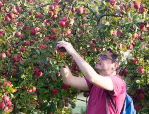 Balade entre la Claise et le Chambon – Dans le verger de Chambon