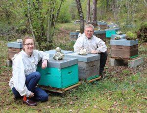 abeille-bete-brenne-64