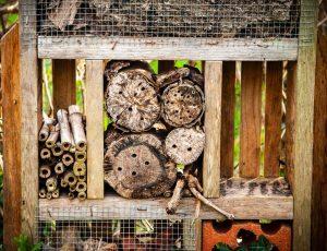 abris-insectes – PNR Brenne