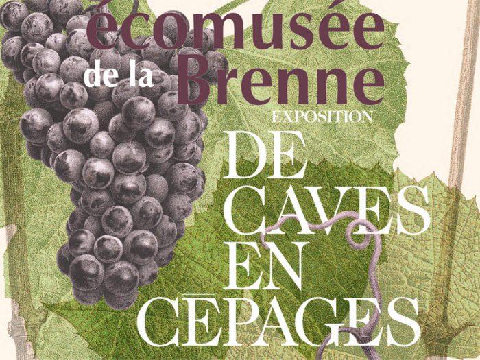 affiche de caves en cepages.cdr