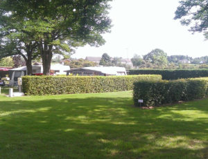 camping-chateaumeillant (4)