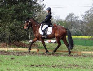 celine-et-twix-2eme-cce-poney-1-championnat-departemental-2016