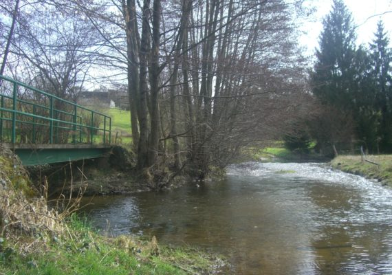 chassignolles-riviere