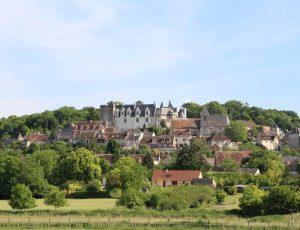 Château de Palluau