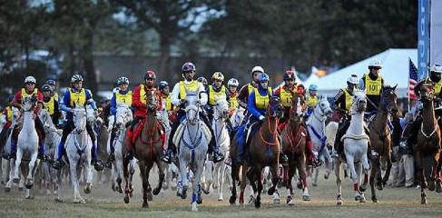 concours endurance pole cheval et ane