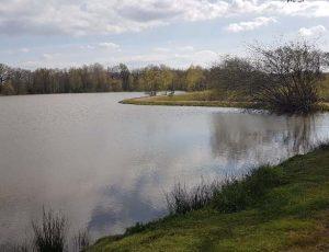 étang communal la châtre l'anglin6