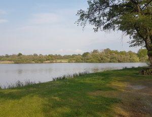 étang de la rochechevreux  lignac13