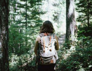 hiker-918704_1920 (1)