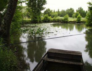 Pêche dans l'Indre