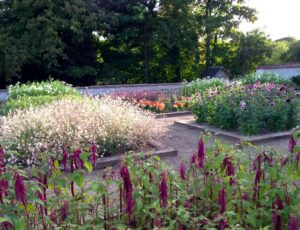 jardin-clos