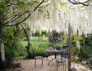 jardin elisee entrée cour
