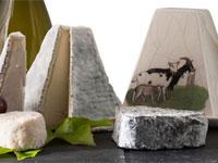 maison du fromage_pouligny