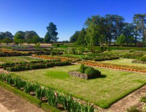 La Motte-Feuilly-jardin-potager