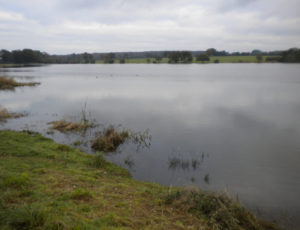 plan d'eau Sainte Sévère sur Indre