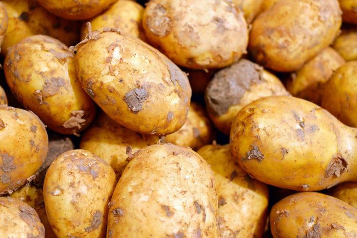 Fête de la pomme de terre à Crevant Indre Berry