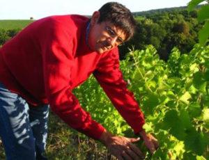 Les secrets du vigneron